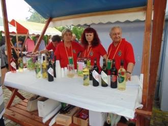 Festival vina-11
