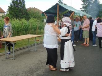 Festival vina-14