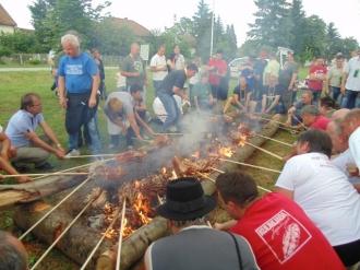 Festival vina-15
